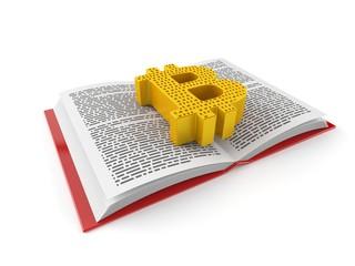 Bitcoin symbol on open book