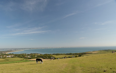 Dorset, England, Britain, south, uk, countryside, outdoors, nature, landscape, scenic, holiday, resort, tourism, destination, vacation, sky, summer, sun, sea, marine, maritime, coast, Swanage, Ballard