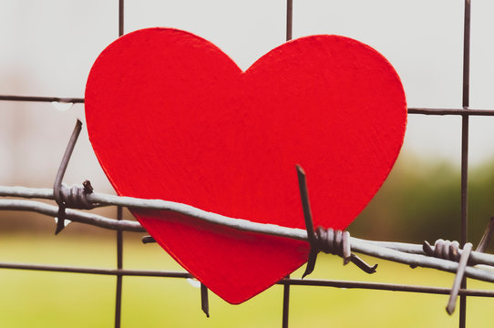 heart and barbed wire on metal mesh fence