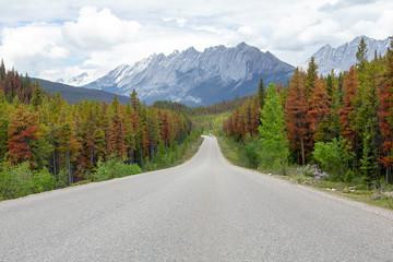 Kanada, Maligne Lake Road im Jasper Nationalpark, Canadian Rockies