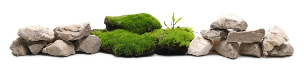 Fototapeta Green moss with decorative rocks isolated on white background obraz