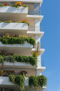 Tall white building with fresh green plants hanging from the balconies
