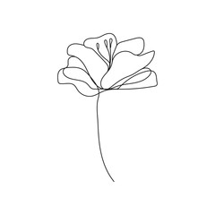 Continuous One Line Drawing. Flowers Contour Abstract Illustration. Simple One Line Plant Drawing. Botanical Nordic Sketch. Vector EPS 10.