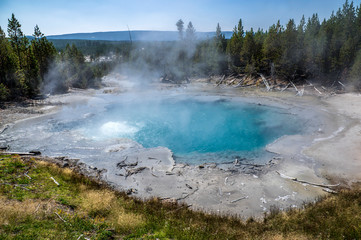 Geyser in Yellowstone National Park. USA. Wyoming