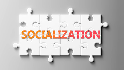 Socialization complex like a puzzle - pictured as word Socialization on a puzzle pieces to show that Socialization can be difficult and needs cooperating pieces that fit together, 3d illustration
