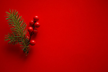 Christmas decoration of holly berry and pine cone on red background.