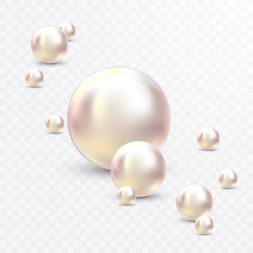 Vector Illustration for your design. Luxury beautiful shining jewellery background with white pearls vector illustration. Beautiful shiny natural pearls. With transparent glares and highlights for