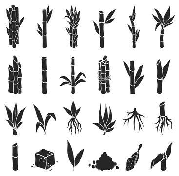 Sugar cane black vector illustration on white background.Sugarcane set icon.Vector illustration of sweet sugar.Set icon of sugarcane plantation.