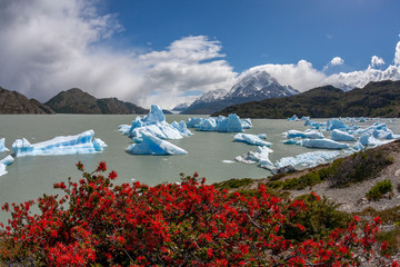 Largo Grey - Torres del Paine National Park - Chile