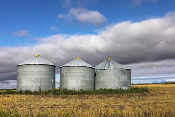 Several grain bins Saskatchewan, Canada