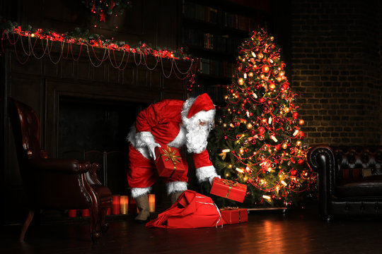 Christmas night, Santa Claus puts gifts under the tree