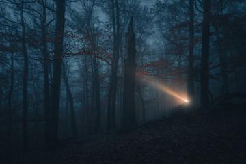 Lichtschein in der Dunkelheit.