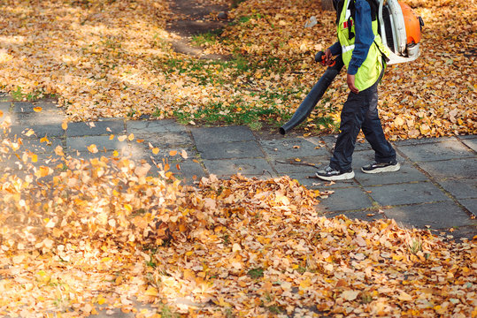 Service worker using leaf blower for cleaning of the road in the park. Autumn season. Park cleaning service