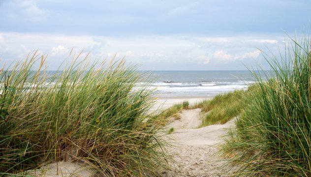 Dune beach on the North Sea island Langeoog in Germany with blue sky and clouds on a beautiful summer day