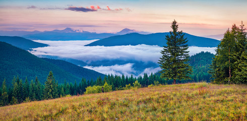 Awesome summer sunrise in Carpathian mountains. Panoramic morning view of mountain valley in June, Ukraine, Tatariv village location, Europe. Beauty of nature concept background..