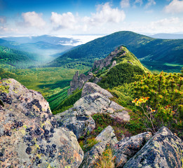 Wall Mural - Colorful summer view of foggy Carpathian mountains, Chornogora ridge, Ukraine, Europe. Amazing morning scene of rocky mountains. Beauty of nature concept background.