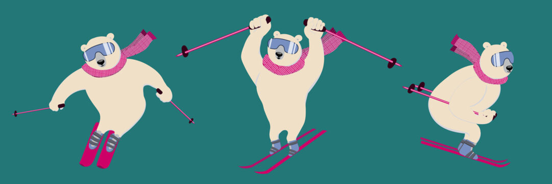 Polar bear on an alpine ski slope. Сharming sporty and strong animal wears scarf and ski goggles, likes downhill skiing.  Set of vector ilustrations with character in flat style. Can be used as mascot