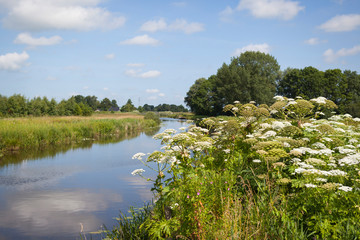 Canal landscape at the Lettelberterdiep in the province of Groningen in the Netherlands