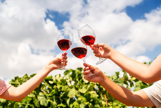 Three large glasses of red wine in the vineyard