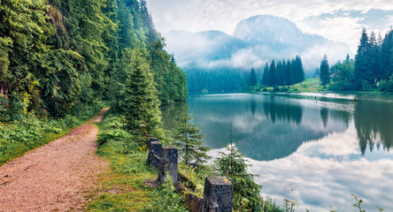 Stunning morning view of Lacu Rosu lake. Misty summer scene of Harghita County, Romania, Europe. Beauty of nature concept background.
