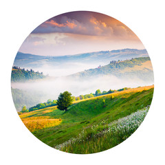 Wall Mural - Round icon of nature with landscape. Blooming white flowers in the summer mountains. Colorful sunrise in Borzhava ridge, Carpathian mountains, Ukraine, Europe. Photography in a circle.