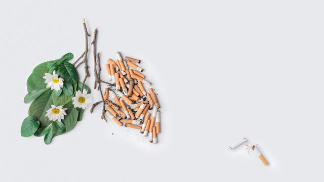 The last one cigarette conceptual photo. Stop smoking theme. Lungs of a healthy person and sick. No Smoking Day concept on a light gray and white background with copy space, for banners and articles