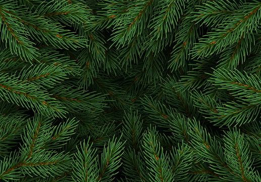 Christmas tree branches. Festive Xmas border of green branch of pine. Pattern pine branches, spruce branch. Realistic design decoration elements. Vector illustration