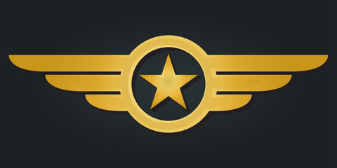 Star with wings logo. Military and Army winged badge. Golden Aviation emblem. Vector illustration.