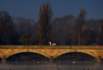 Horse riders cross a bridge over the Serpentine lake  in Hyde Park, London
