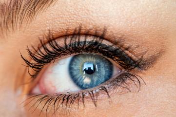 Blue eyes close up