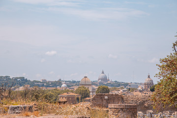 Foto op Aluminium Rome July 31, 2015: view from the Palatine of Rome