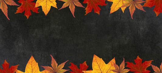 autumn – frame of colorful leaves isolated on a black concrete texture – background panorama...
