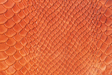 Deurstickers Krokodil Texture of genuine matte rough leather close-up, trend pattern, imitation of the skin of scaly exotic reptile, fashion bright orange red color, modern background