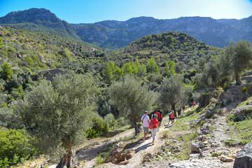 Serra de Tramuntana mit Wanderern auf Mallorca