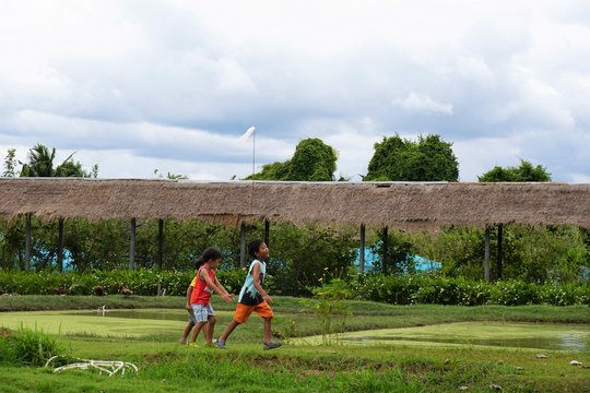 Children are walking and playing at the farm with fun.