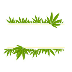Unfolded hemp branches make up a frame for the inscription on a white background. Frame for text from hemp.