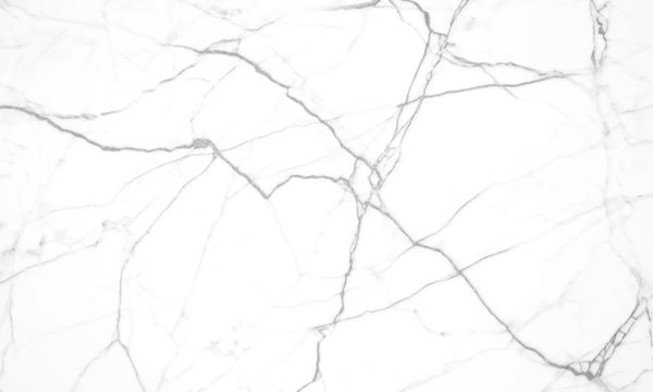 white marble background with black veins.