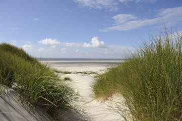 Photo sur Toile La Mer du Nord Amrum