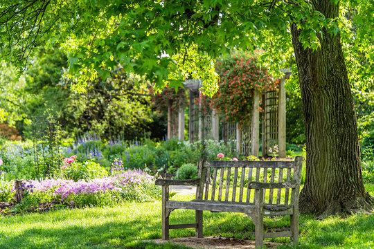 wooden bench at flower garden park