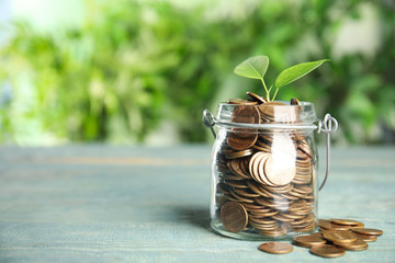 Glass jar with coins and green plant on light blue wooden table