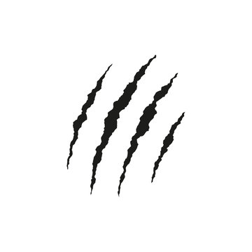 Black claws scratches. Vector illustration. Isolated.