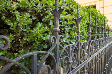 Beautiful decorative cast metal wrought fence with artistic forging in a garden.