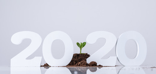 Poster Planten eco 2020