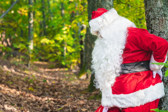 Santa Claus is suffering from back pain on forest