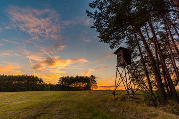 Deer stand (tree stand) beside field and forest at sunset light, Czech republic