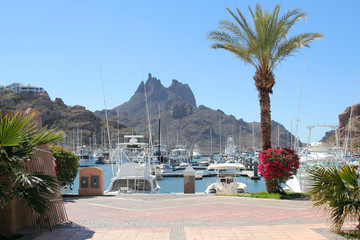 Luxury yachts in port of San Carlos, Mexico