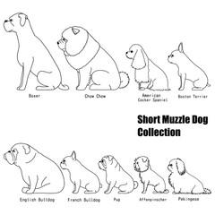 short muzzle dog collection