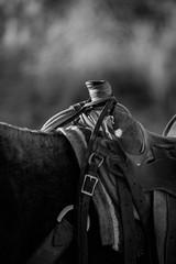 Black and White Western Saddle