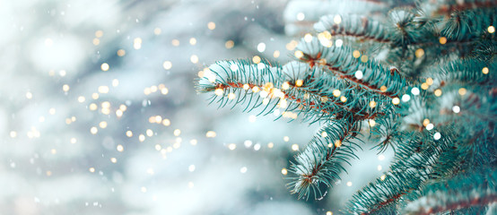 Photo sur Aluminium Arbre Christmas tree outdoor with snow, lights bokeh around, and snow falling, Christmas atmosphere.