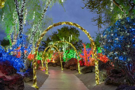 Night view of many Christmas lights